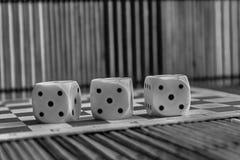 Monochrome стог пластмассы 3 белизн dices на коричневой предпосылке деревянной доски 6 кубов сторон с черными точками 5 Стоковая Фотография