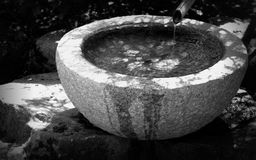 Monochrome таза воды Стоковое фото RF