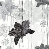 Monochrome флористическая безшовная картина с орхидеями нарисованными рукой. Vect иллюстрация вектора