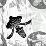 Monochrome флористическая безшовная картина с орхидеями нарисованными рукой Vect Стоковая Фотография RF