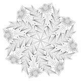 Monochrome флористический шаблон страницы расцветки Стоковые Изображения