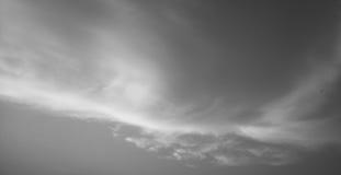 monochrome Стоковые Фото
