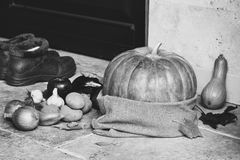 Monochrome Autumn Still Life. Pumpkin and vegetables at front door Royalty Free Stock Photo