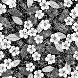 Monochrome  background with cherry blossoms. Vector floral seamless pattern. Stock Image