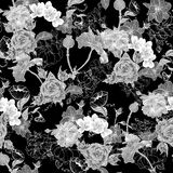 Monochrome Background with Flowers Royalty Free Stock Image