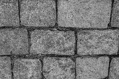 Monochrome bas raide modifié la tonalité gris de site de base de parc de voie de style urbain de modèle de bloc rectangulaire de  photos stock