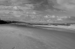 Monochrome Beach. This is a monochrome photograph of ST. Claire beach in Dunedin, New Zealand Stock Photos