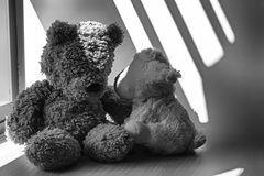 Monochrome Bear and lamb toy sitting by the window in shadows. Monochrome Bear and lamb sheep toy sitting by the window in shadows stock photography
