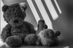 Monochrome Bear and lamb toy sitting by the window in shadows. Monochrome Bear and lamb sheep toy sitting by the window in shadows stock images