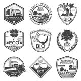 Monochrome Bio Natural Labels Set Royalty Free Stock Photos