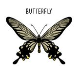 Monochrome black butterfly. Graphic icon of butterfly vector illustration