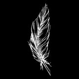 Monochrome black and white bird feather vector sketched art Stock Photo