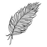 Monochrome black and white bird feather vector sketched art Royalty Free Stock Photo