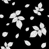 Monochrome black and white colored seamless pattern with raspberry leaves. Royalty Free Stock Images