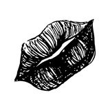 Monochrome black and white lips sketched line art vector Stock Images