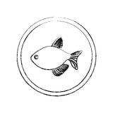 Monochrome blurred line contour with fish in circular frame. Illustration Royalty Free Stock Images