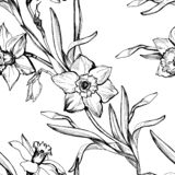 Monochrome botanical seamless pattern with hand drawn flowers daffodils. royalty free stock photography