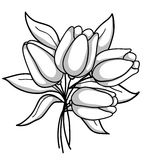Monochrome bouquet of tulips Stock Photos