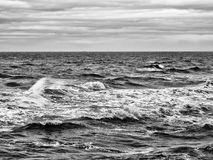 Monochrome brooding dark ocean waves with dark winter clouds. On the horizon Stock Image