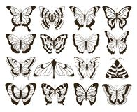Monochrome butterflies. Black and white drawing, hand drawn tattoo shapes vintage collection. Vector butterfly isolated