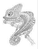 Monochrome chameleon coloring page black over Royalty Free Stock Photos