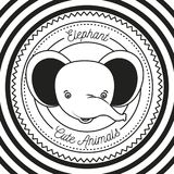 Monochrome circular lines background with silhouette frame decorative and face elephant cute animals text. Vector illustration Royalty Free Stock Images