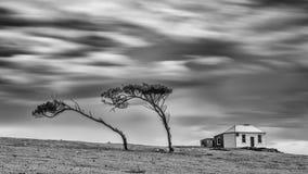 Monochrome - Colonial House, Maria Island Tasmania. A slow shutter Monochrome photograph of trees and a Colonial House, Maria Island Tasmania stock image