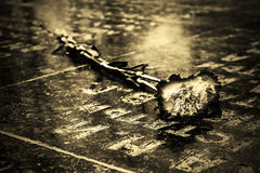 Monochrome conceptual picture - carnation on the tombstone Stock Photos