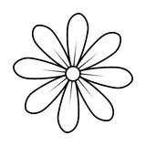 Monochrome contour of daisy flower icon floral design Stock Image