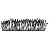 Monochrome contour of field grass. Illustration Stock Photos