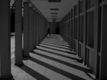Monochrome corridor and columns perspective view. Monochrome corridor, columns and shadows perspective view interior view of architecture stock image