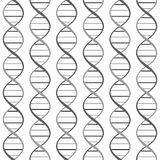 Monochrome DNA seamless pattern. Royalty Free Stock Photos