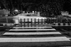 Monochrome -1 do cruzamento de zebra foto de stock