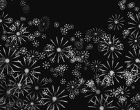Monochrome floral. Royalty Free Stock Photography