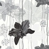 Monochrome floral seamless pattern with hand drawn orchids .Vect Royalty Free Stock Photos