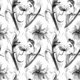 Monochrome floral seamless pattern with Poppies and Tulip flower. S, Watercolor painting Stock Image