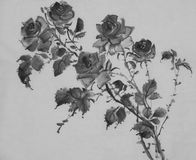 Monochrome rose flower picture. Monochrome flower drawing roses on a white background Royalty Free Stock Images