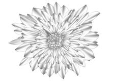 Monochrome flower vector illustration Stock Image