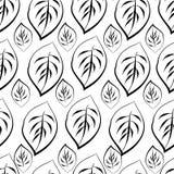 Monochrome foliage seamless printable pattern. Doodle leaf, blossom print wallpaper. Vintage black white retro background. Textile flower art silhouette. Spring Royalty Free Stock Photos