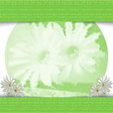 Monochrome green flowers. Stylish light background. Royalty Free Stock Photos