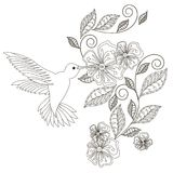 Monochrome hand drawn decorative floral element, hummingbird for coloring page, print, tattoo Royalty Free Stock Photo