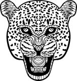 Monochrome hand-drawn ink drawing. Painted Jaguar on white backg Stock Image