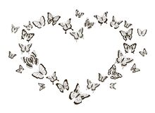 Free Monochrome Heart Of Butterflies. Flying Insects With Detailed Wings. Isolated Black And White Tattoo Shapes. Decorative Stock Photography - 207732512