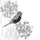 Monochrome   illustration of cartoon bird and flowers. Inv Stock Images