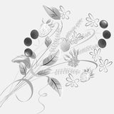 Monochrome illustration with forest flowers Royalty Free Stock Photos