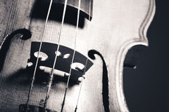 Monochrome image of hand crafted violin Stock Image