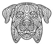 Monochrome ink drawing. Coloring book for adults. The head of a Rottweiler with tribal pattern. Zenart. Stock Photo