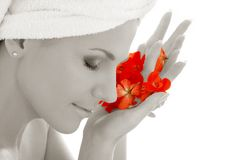 Monochrome lady and red petals royalty free stock photography