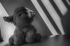 Monochrome Lamb toy sitting by the window in shadows. Monochrome Lamb sheep and penguin toy sitting by the window in shadows stock photography