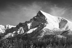 Monochrome landscape view of Mt Krivan in High Tatras, Slovakia stock image